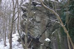 classe-verte-roisin-2009-310