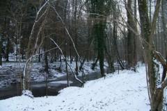classe-verte-roisin-2009-317